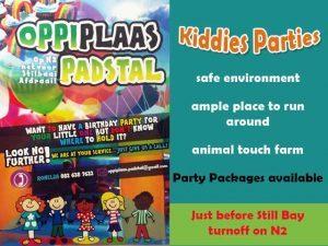 Kiddies Party Venue near Still Bay turnoff Riversdale