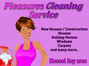 Pleasures Cleaning Services